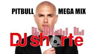 PITBULL MEGA MASHUP MIX - DJ SHORT-E