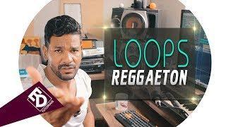 Loops Reggaeton Wav  | Download Grátis | ED Tutoriais